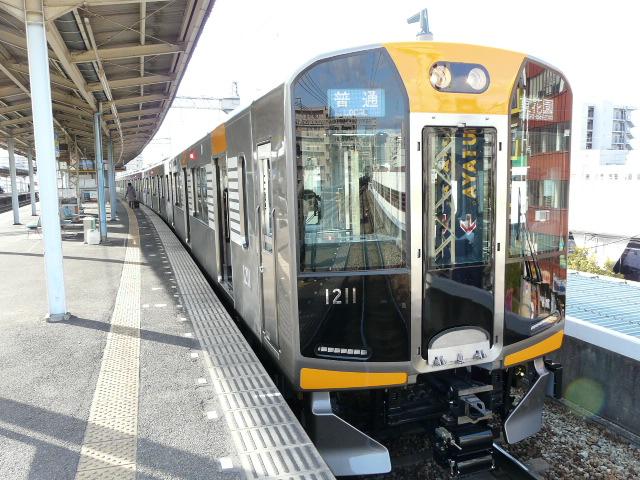 P1130118
