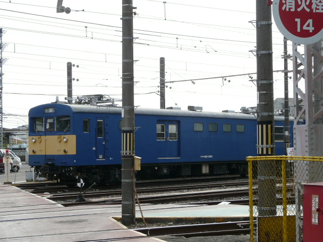 P1160197